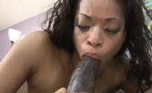 Kinky Black Honey Pleasures A Massive Member