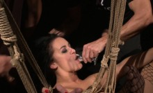 Pussy tormented slave swallows cum