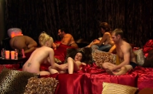 Red Room Participants Engage In Swinger Action With Others